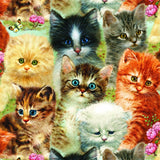 5d Cat Diamond Painting Kit Premium-36