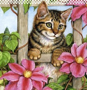 5d Cat Diamond Painting Kit Premium-65