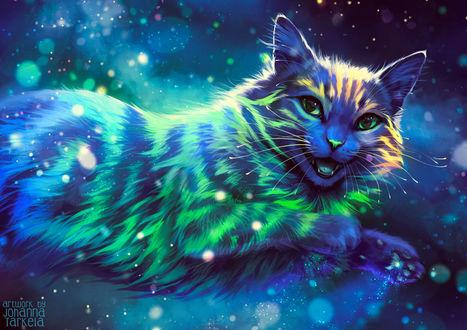 Cat Special Colors Diamond Painting Kit - DIY