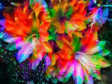 Rainbow Flowers Diamond Painting Kit - DIY Rainbow Flowers-14