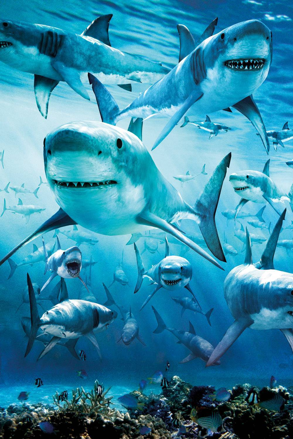 Sharks Animal Diamond Painting Kit - DIY