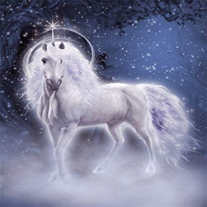 Unicorn Diamond Painting Kit - DIY Unicorn-12
