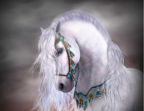 Horse White Night Diamond Painting Kit - DIY