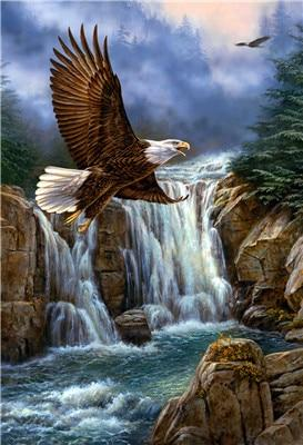 Landscape Eagle Fly Waterfall Diamond Painting Kit - DIY