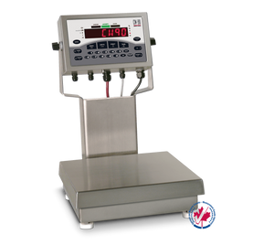Rice Lake CW-90 Checkweigher Scales