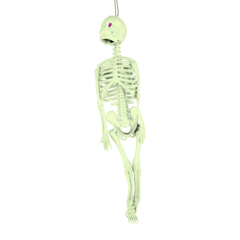 Children Educational Toys Whole Body Scary Skeleton Model Toy