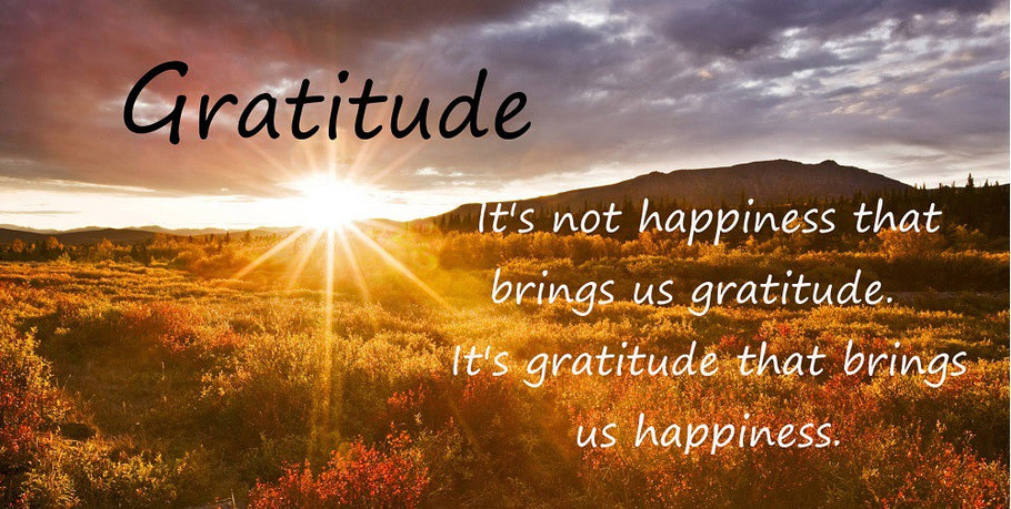 Gratitude...some thoughts