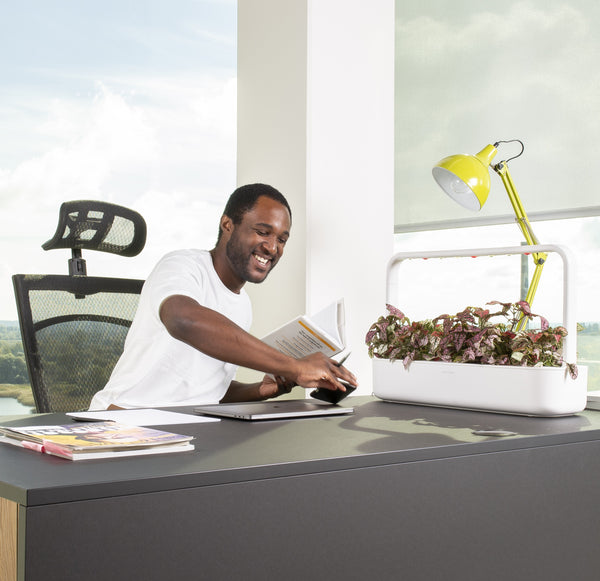 Happy man sitting at an office desk with a Click & Grow Smart Garden 9 on the table.
