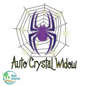 Auto Crystal Widow- TShirt