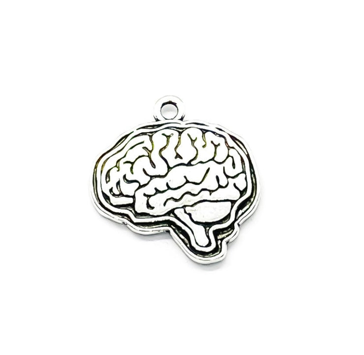 1 Brain Charm, Anatomy