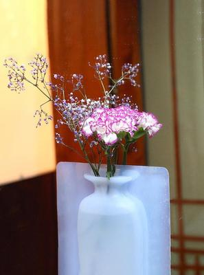 Home Best  Silicone vase  rubber stickers