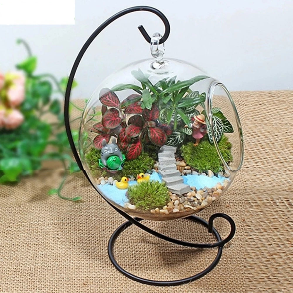 Home Best  Glass Ball Flowerpot