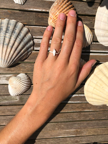 little Shell ring