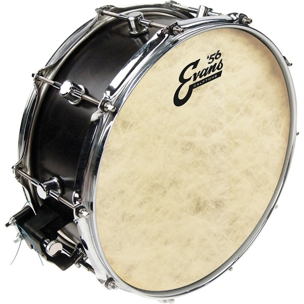 "TT14C7 14"" '56 Calftone Tom & Snare Drum Head"