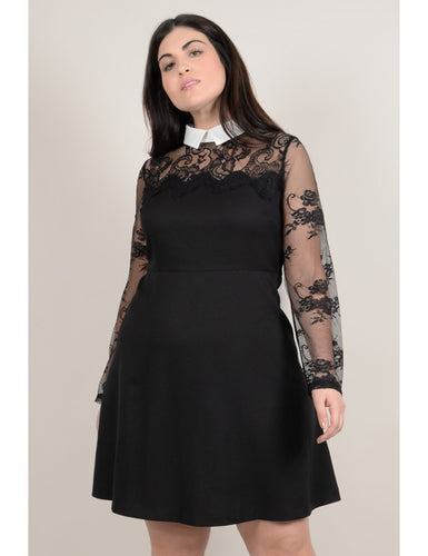 Curve Fitted dress, lace bust and lapel collar_