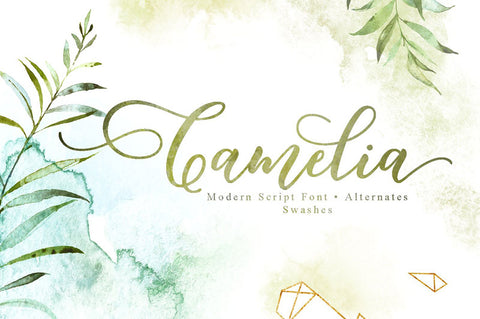 Camelia-Script-Font-with-Alternates-and-Swashes---Best-New-Romantic-Script-Fonts