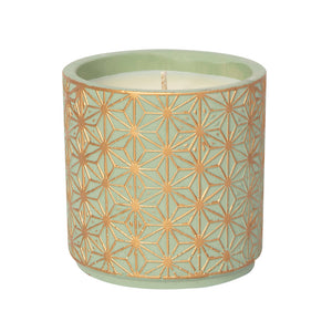 Bamboo and Jasmine 15 oz Candle in flower pot