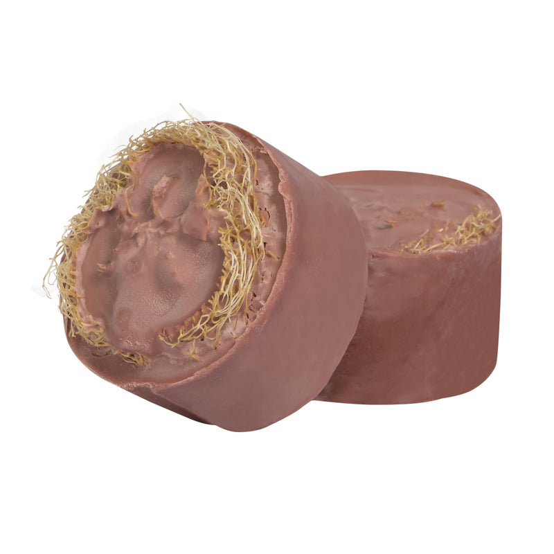 LOOFAH SPONGE EXFOLIATING SOAP