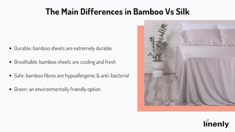 Bamboo Vs Silk: The Differences Infographic