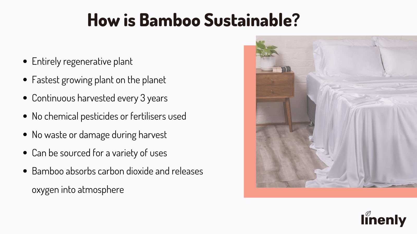 are bamboo sheets environmentally friendly