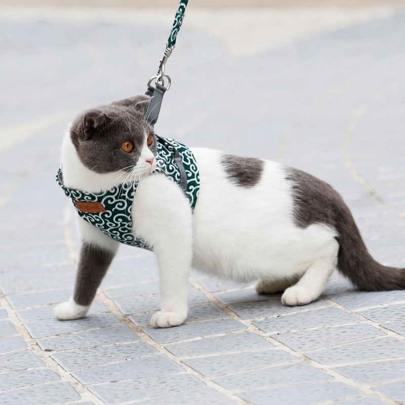 Cat Vest Harness + Leash Set