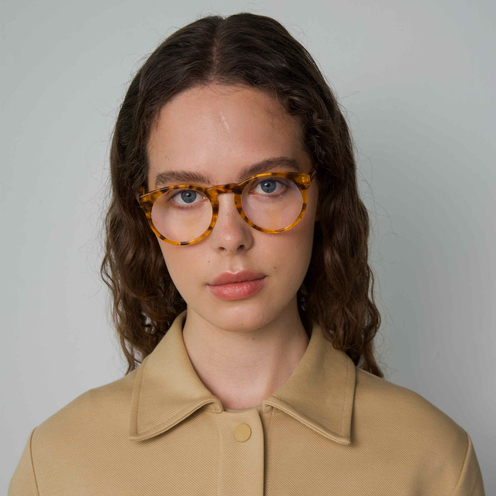 SHARP Tortoise Computer Glasses