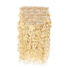 products/Clip_In_Curly_Hair_Extensions_Blonde_Color_grande_grande_46af12bc-e326-4680-b419-62f9c7d6c16a.jpg