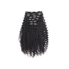products/clip-in-deep-curly-black-01.jpg