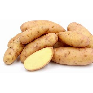 Fingerling potatoes - per LB - The Chef Scott Shop