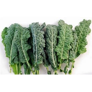 Green kale - per bunch - The Chef Scott Shop