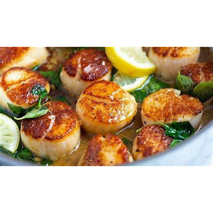 Fresh Jumbo Scallops - 1 LB (8 -12 Scallops) - Dry Harvest - The Chef Scott Shop