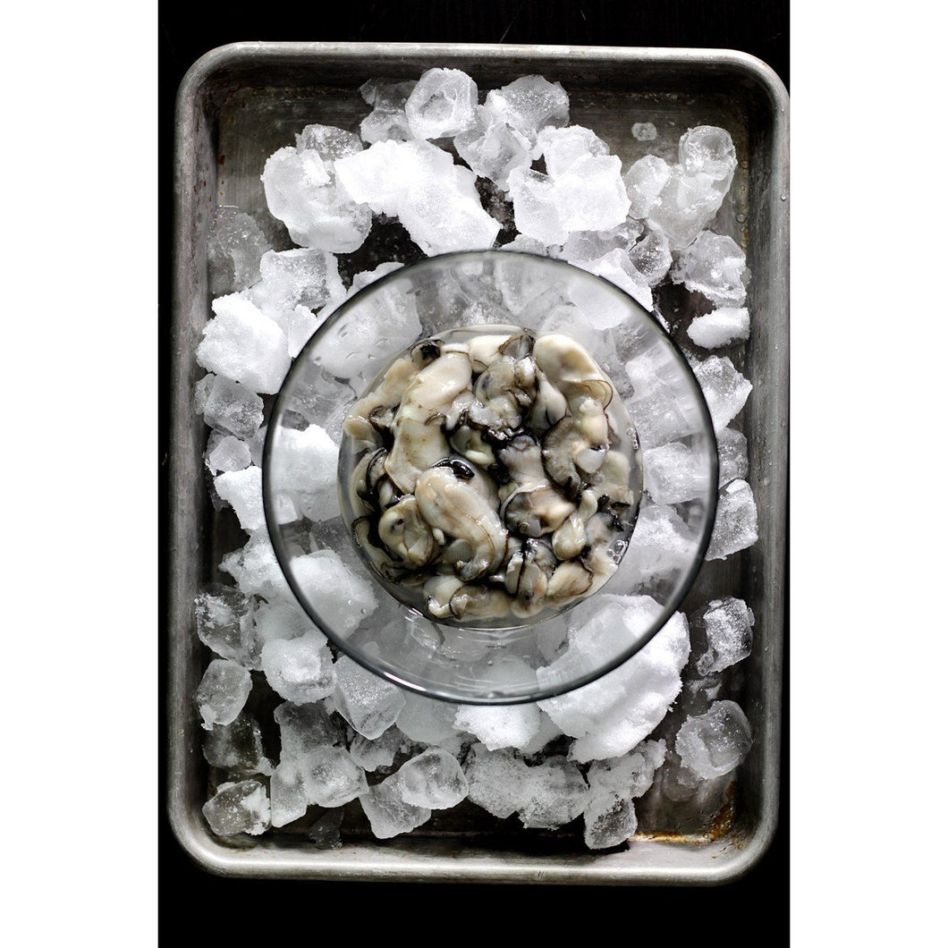 Pre Shucked Oysters - 1 dozen- - Just Meat & Oyster Juice - The Chef Scott Shop