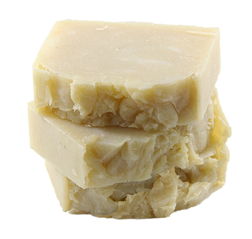 Swimmers Shampoo Bar