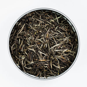 Organically-Grown Fair Trade White Tea in Tin