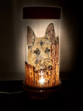 Load image into Gallery viewer, Canine Tímido Hand-Painted Mayan 360 Lantern