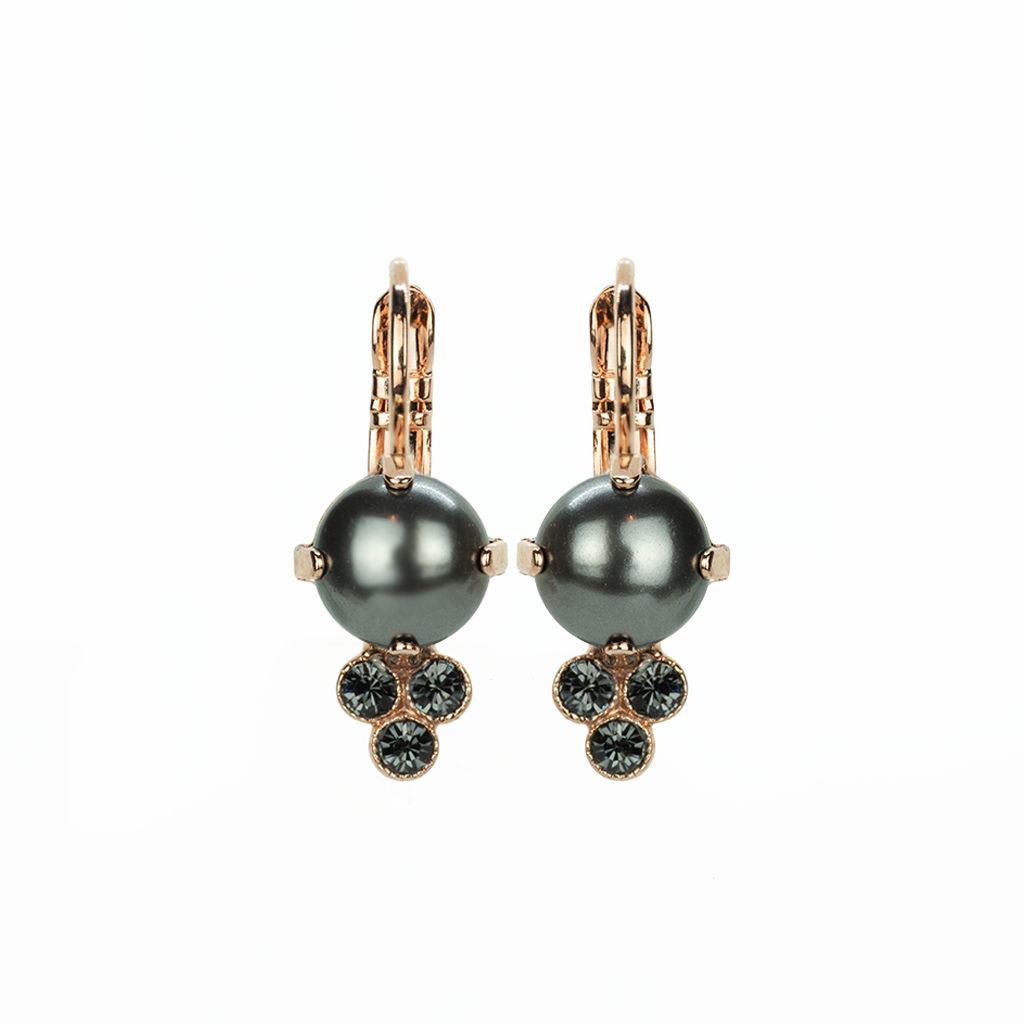 "*Preorder* Must-Have Leverback Earrings in ""Painted Lady"""