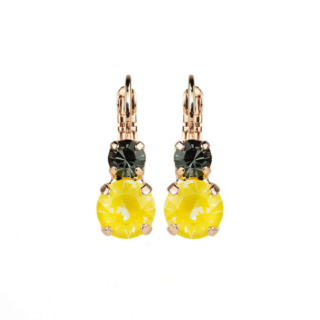 "Must-Have Leverback Earrings in ""Painted Lady"" *Preorder*"