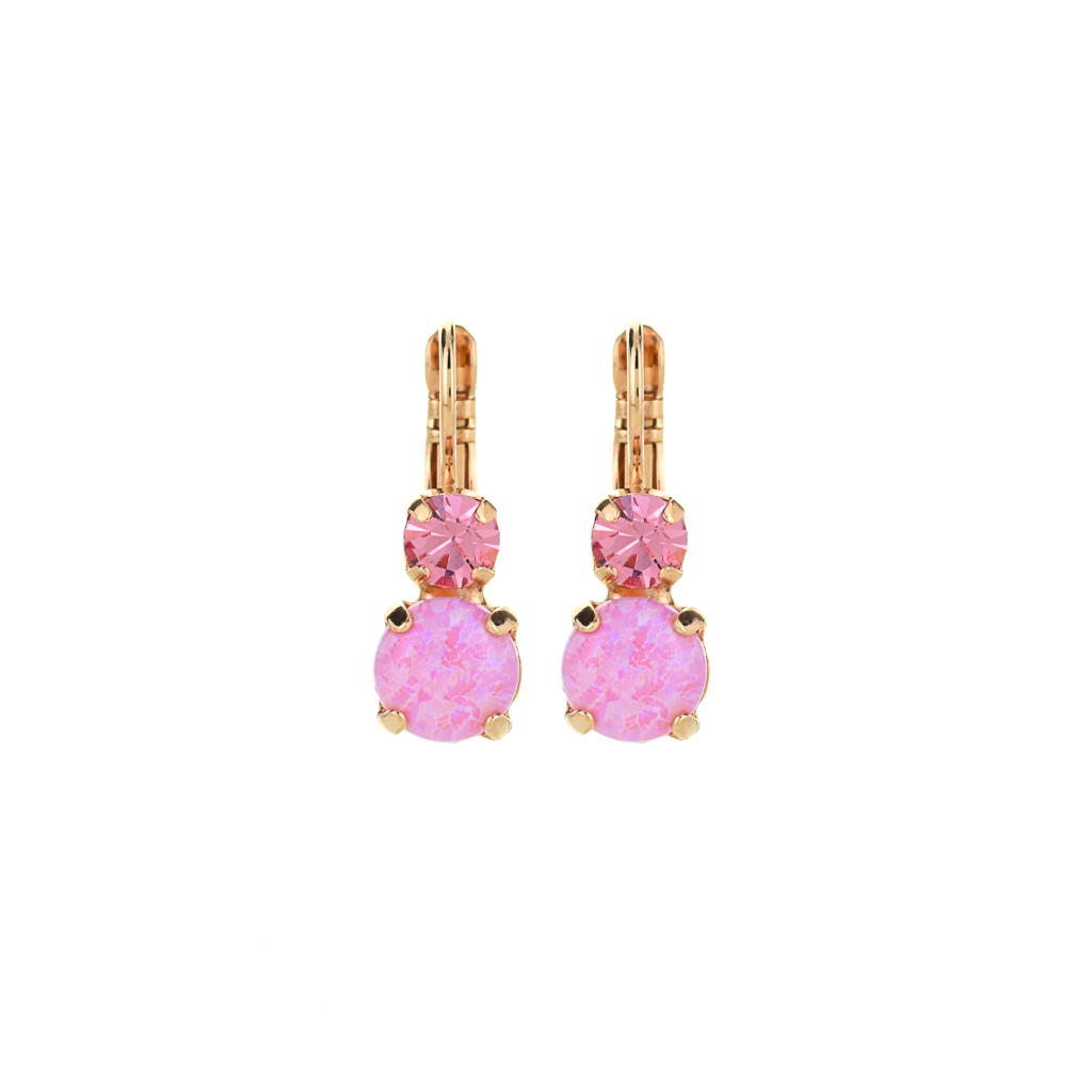 "Must-Have Double Stone Leverback Earrings in ""Love"" *Preorder*"