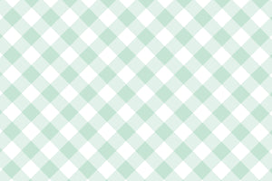 Seafoam Gingham Placemats