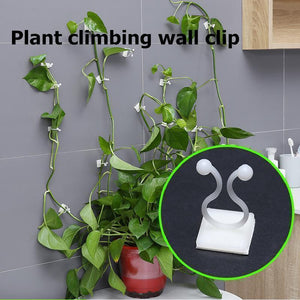 Plant Climbing Wall Clip -- 01 - bginvention