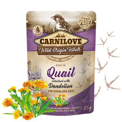 CARNILOVE CAT POUCH (MIXABLE 24 packets)