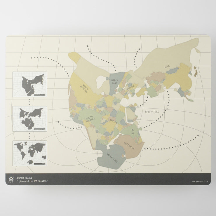 Pieces Of Pangea Board Puzzle