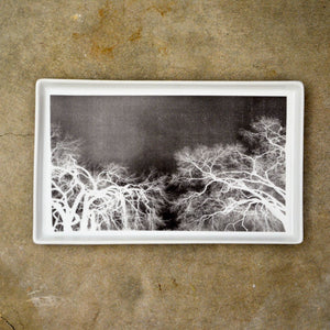 Branches X-Ray Tray Large