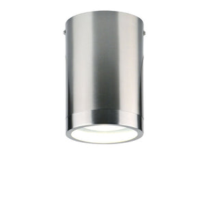 Capsule Ceiling Light