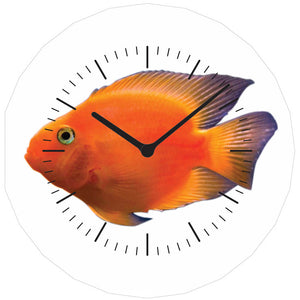 Goldfish AboutFaceClock