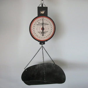 American Family Hanging Scale