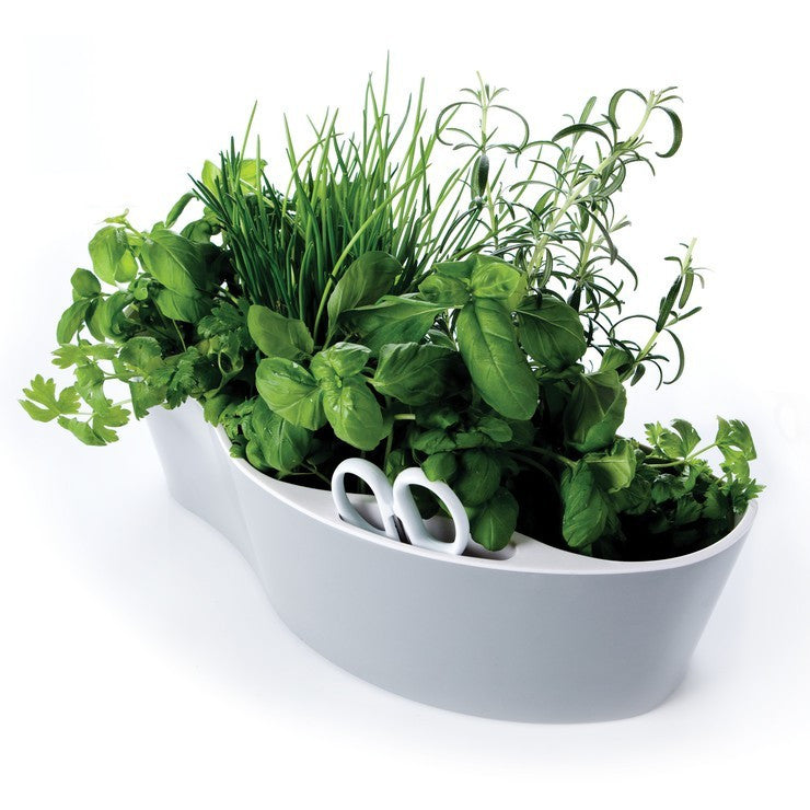 Herb Pot & Scissors Set