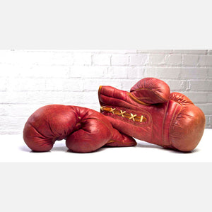 Boxing Gloves Pair