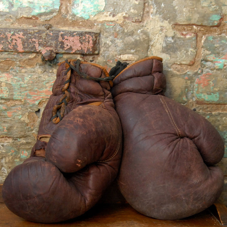 Boxing Gloves II
