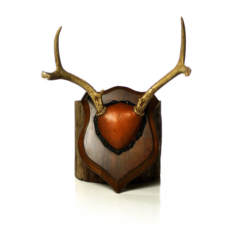 Antler Mount On Shield